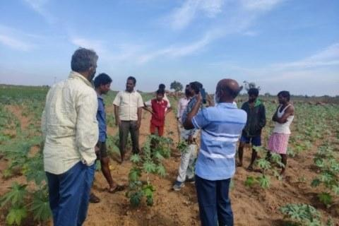World Soil day organized by ICAR-IIOR